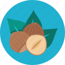 food, nuts icon
