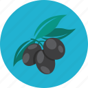food, olive, olives icon