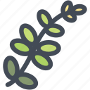 food, leaf, leaves, nature, plant, tree icon