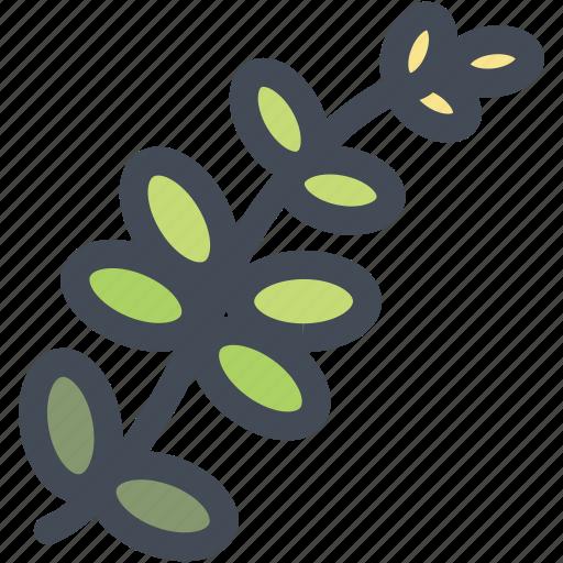food, leaf, leaves, nature, plant, tree icon