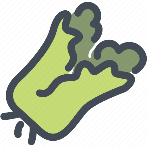 curly, food, green, kale, vegetable icon