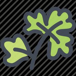 coriander, coriander leaf, food, herb, ingredient, leaf icon
