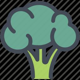 broccoli, food, healthy food, ingredient, nutrition, vegetable icon