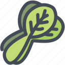 bok choy, food, leaf, substract, vegetable icon