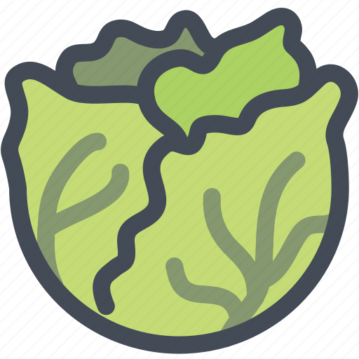 cabbage, farm, food, vegan, vegetable icon