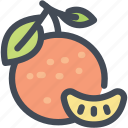 citrus, food, fruit, orange, orange slice, oranges