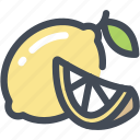 food, fruit, juicy, lemon, slice icon