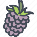 berries, food, fruit, health, nutrition, raspberry, raspberry icon icon
