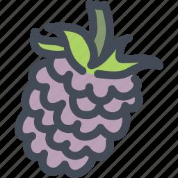berries, food, fruit, health, nutrition, raspberry, raspberry icon icon