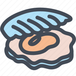 food, oyster, scallop, sea food, seashell, shell icon