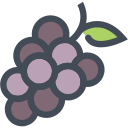 food, fruit, grape, grapes, healthy, juice, vegetable icon