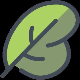 food, leaf, nature, salad, spinach, vegetable icon