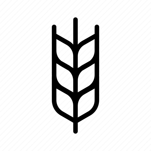 branch, cereal, corn, grow, growing, plant, wheat icon