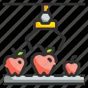 conveyor, grading, logistics, qc, transport