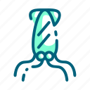 animal, cuttlefish, food, seafood, squid icon