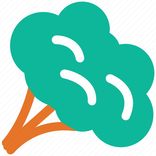 broccoli, food, healthy food, vegetable icon
