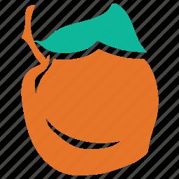 apricot, food, fresh, fruit icon