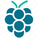 bunch of grapes, fruit, grapes, healthy food icon
