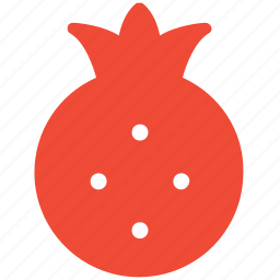 fruit, healthy food, pomegranate, tropical icon