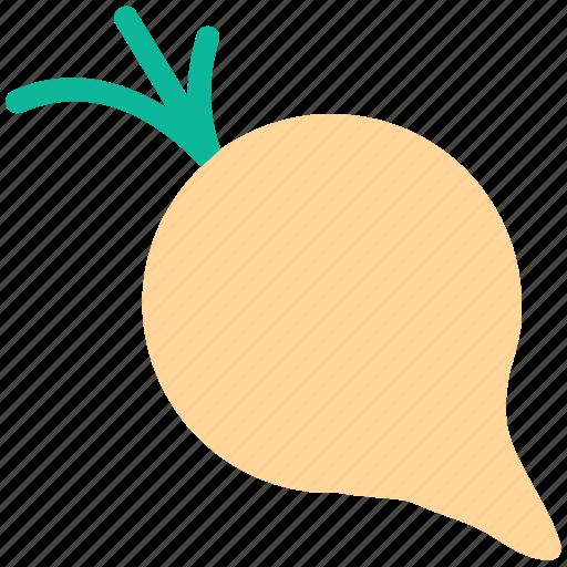 food, turnip, vegetable, white icon