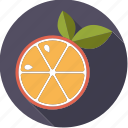 citrus, food, foodix, fruit, orange icon