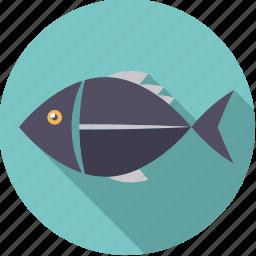 fish, food, foodix, seafood icon