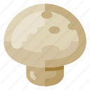 beverage, food, health, mushroom, vegetable icon