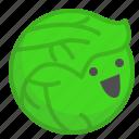 cabbage, garden, happy, vegetable, veggie