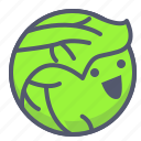 cabbage, garden, happy, vegetable, veggie icon