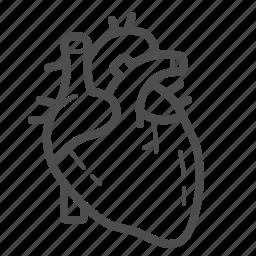 cardio, cardiology, cardiovascular, health, healthcare, heart, medical icon