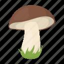 forest, mushroom, plant icon