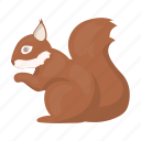 mammal, rodent, forest, squirrel, animal icon
