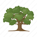 forest, leaves, plant, tree icon