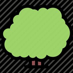 bush, forest, garden, nature, plant icon