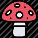 plant, garden, forest, mushroom, nature