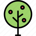forest, garden, nature, plant, tree icon