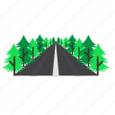 forestry, forrest, high, pine, road, trees