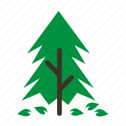 forestry, forrest, leaves, pine, plant, tree, trees icon