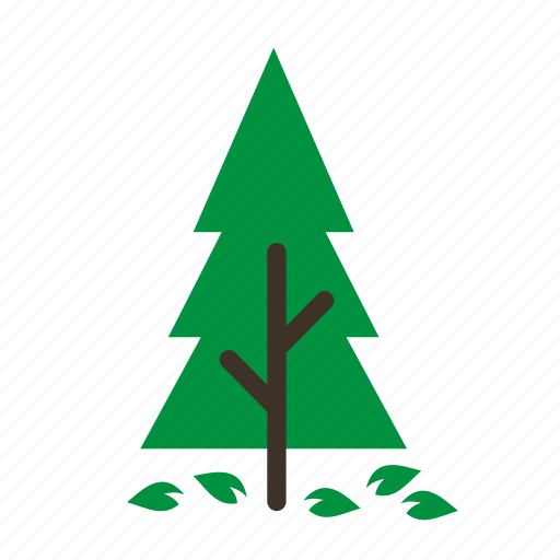 forestry, forrest, old, pine, plant, tree, trees icon