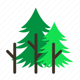 forestry, forrest, leaves, mature, pine, tree, trees icon