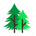 forestry, forrest, mature, pine, tree, trees, young icon
