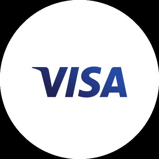 banking, business, credit, finance, money, visa icon