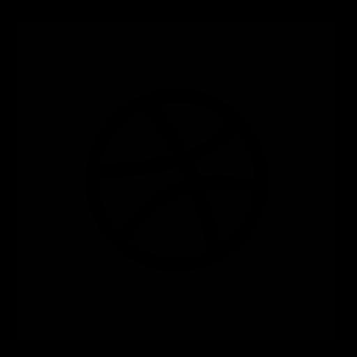 dribbble, square icon