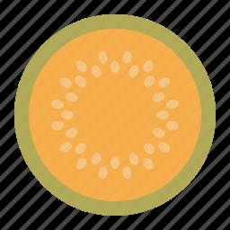 fresh fruit, fruit, melon, tropical fruit, vitamins, yellow, yellow melon icon