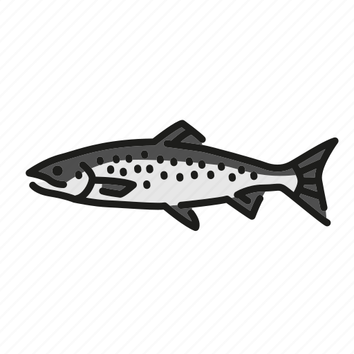 fish, fishes, fishing, freshwater, freshwater creature, taimen icon