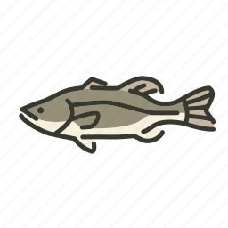 bass, fish, freshwater gamefish, largemouth bass, north america, sunfish icon