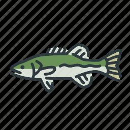 bass, fish, fishing, freshwater, spotted bass, sunfish icon