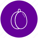 component, food, fruit, ingredient, plum icon