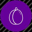 component, food, fruit, ingredient, plum icon