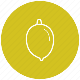 component, food, fruit, ingredient, lemon icon